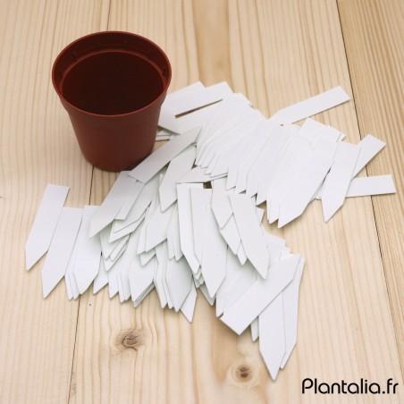 Lot de 100 Mini Etiquettes pour Plantes et Semis.