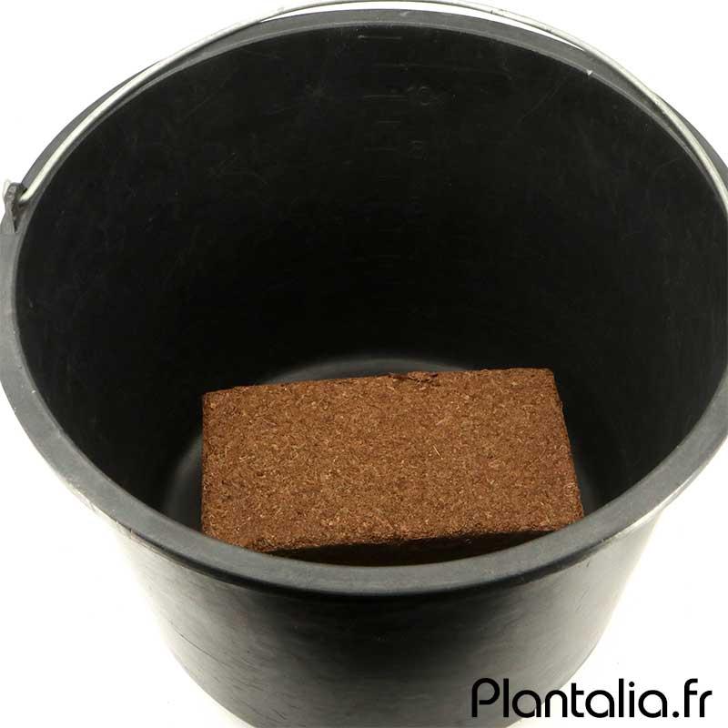 Substrat fibre de coco déshydratée